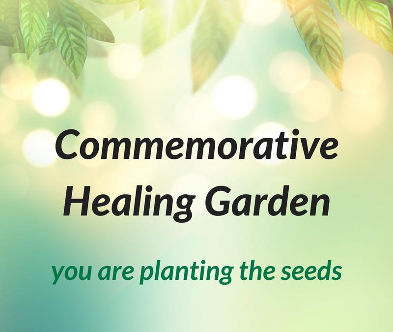Creating a Quiet, Healing Haven
